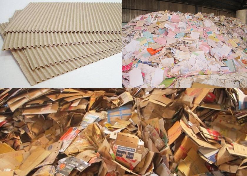 Phân loại giấy vụn được thu mua