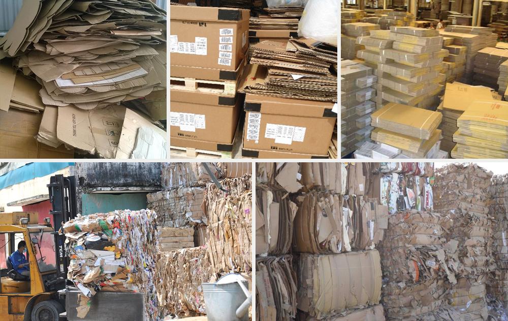 dịch vụ thu mua giấy phế liệu