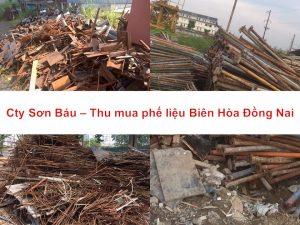 thu-mua-phe-lieu-bien-hoa-dong-nai
